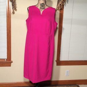 Jones New York 16W Pink Dress